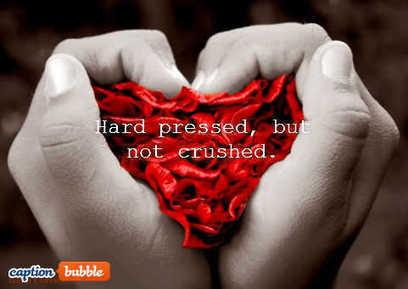 Pressed, Not Crushed! | Biblical Principles | Scoop.it