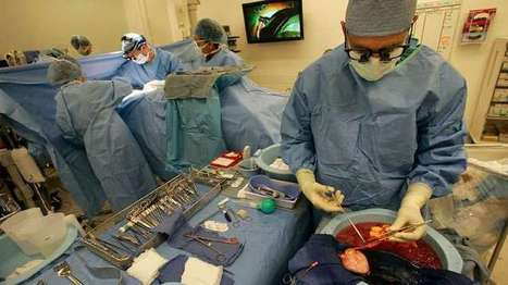 Organ donations on the rise among Latinos at County-USC Medical Center - Every Organ Donor   Organ Donation   Scoop.it