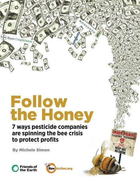 Follow the Honey: 7 ways pesticide companies are spinning the bee crisis to protect profits | All things Honey | Scoop.it