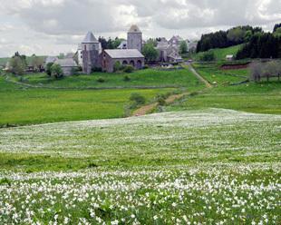 Quand l'Aubrac sera Parc naturel régional | OT et régions touristiques de France | Scoop.it
