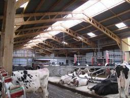 Valoriser le bois breton dans les bâtiments agricoles | abibois | Scoop.it