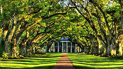 Oak Alley Plantation, Restaurant &... | Oak Alley Plantation: Things to see! | Scoop.it