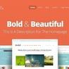 Striking WordPress Themes and Plugins