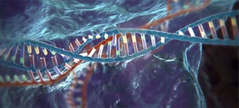 Everything You Need to Know About CRISPR, the New Tool that Edits DNA | Mr. Isaacs Biology | Scoop.it