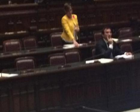Il ministro #Boschi prende parola per porre la questione di fiducia al decreto @nicola_bianchi #M5S | Imprese a 5 Stelle | Scoop.it