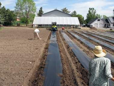 For developments, nearby working farms are the next big amenity | Food Energy Water Nexus | Scoop.it