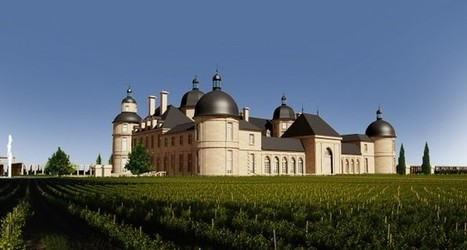 Moser to bring Chinese wine to UK supermarkets | Autour du vin | Scoop.it