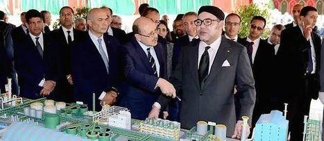 Agro-industrie : le Maroc crée une usine d'engrais pour l'Afrique | CIHEAM Press Review | Scoop.it