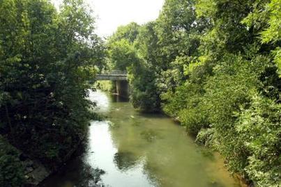 Les déchets verts gênent la vie des rivières - Le Soir | Education environnement | Scoop.it