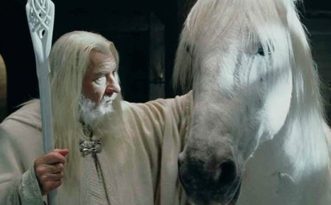 Le cheval de Gandalf est mort | Salon du Cheval | Scoop.it