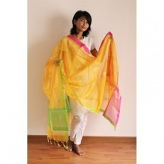 Chanderi Dupattas in Cotton Silk for Online Shopping : Madhurya   Kurtis, Sarees, Jewellery   Scoop.it