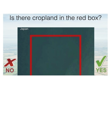 You could help real-world farmers by playing Cropland Capture | Geek Therapy | Scoop.it
