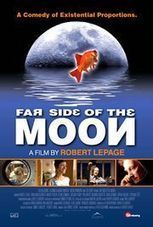 Depth Insights » Stones, Spaceshots, and Shadow Siblings: Symbolic Review of Far Side of the Moon By Colleen Szabo | Depth Psych | Scoop.it