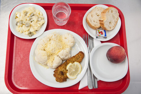 What French Kids Eat For School Lunch (It Puts Americans To Shame!) | Cuppa | Scoop.it