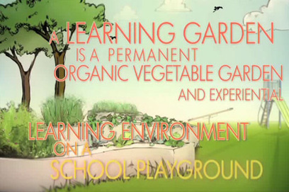 The Kitchen Community: Funded 6 Learning Gardens in Chicago | School Gardening Resources | Scoop.it