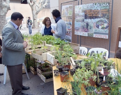 Gardanne: Le troc nature, alternative à la marchandisation | Economie Responsable et Consommation Collaborative | Scoop.it