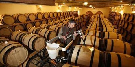 La Chine se détourne des vins et spiritueux français | Perspectives en Agroalimentaire | Scoop.it