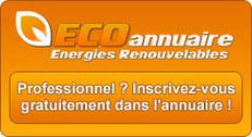 Eolienne - avantages et inconvénients de l'énergie éolienne - les-energies-renouvelables.eu | Avantages et inconvénients de l'énergie éolienne | Scoop.it