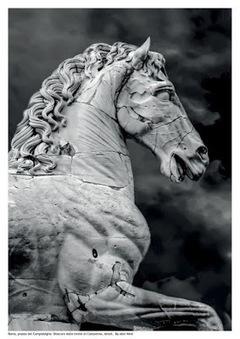 El caballo de Diocleciano, salvador de la población de Alejandría | LVDVS CHIRONIS 3.0 | Scoop.it
