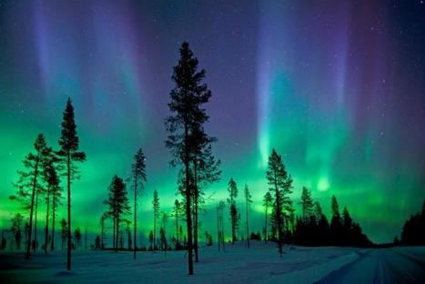 Dream Job in the Arctic? Aurora Borealis Watch | Oceans and Wildlife | Scoop.it