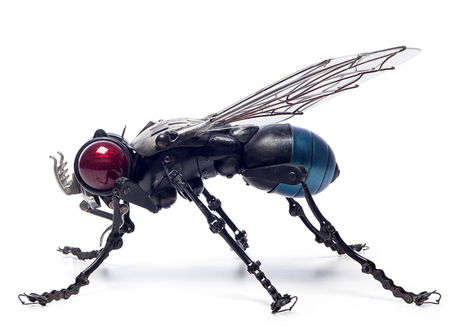 Edouard Martinet's Masterfully Sculpted Animals and Insects Made from Bicycle, Car, and Motorcycle Parts   Amazing art!   Scoop.it