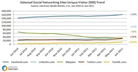 Le classement US des réseaux sociaux depuis 1 an (FrenchWeb.fr) (Jacques FROISSANT Altaïde) | Recrutement et RH 2.0 | Scoop.it