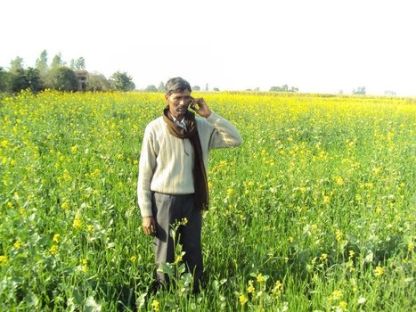 How 2 Messages a Week are Helping 400,000 Farmers avoid Crop Loss and Increase Harvest | Tech in agriculture | Scoop.it