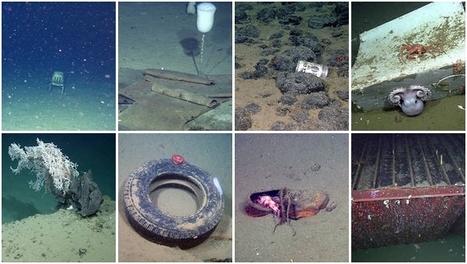 Pollution des océans: les déchets envahissent les fonds marins | Toxique, soyons vigilant ! | Scoop.it