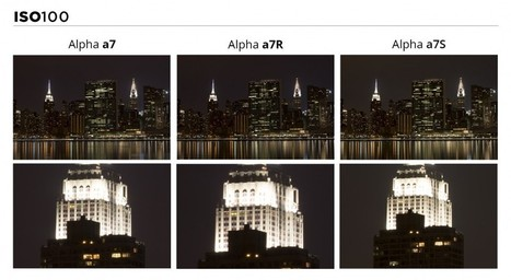 The Sony a7 Series: Which Model Suits You Best?   Sony A7 and A7R   Scoop.it