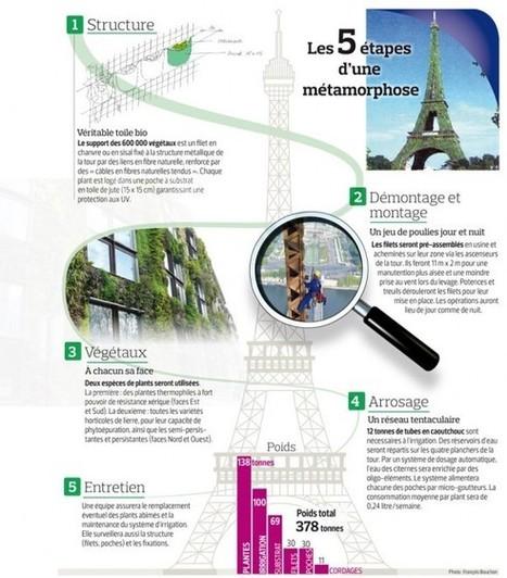 La Tour Eiffel verte : un pari fou pour un Paris symbole de l'écologie | Vertical garden | Scoop.it