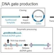 MÉDICAMENT: Un « ordinateur chimique » qui prévoit la biologie moléculaire | sc.environnement | Scoop.it