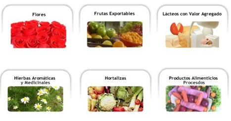 AgroIndustria En Bogota-Cundinamarca y Colombia   Agroindustria Sostenible   Scoop.it