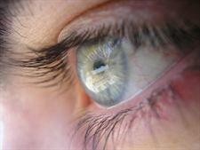 Entrenar la función atencional mejora la capacidad visual | Salud Visual 2.0 | Scoop.it