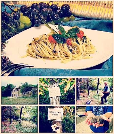 Spaghetti with Truffles and Truffle Hunting in Pievebovigliana | As You Want Dishes | Scoop.it