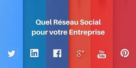 ▶ Choisir son Réseau Social : Le Guide Complet | SI mon projet TIC | Scoop.it