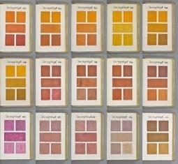 El predecesor de la guía de color - Duall MCM   Social, Seo, Web, Diseño   Scoop.it