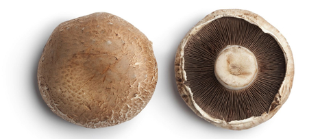 Mushrooms For Breast Cancer Prevention | NutritionFacts.org | Plant Based Nutrition | Scoop.it