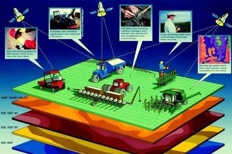 What is Precision Agriculture? Geospatial Technologies - Data Collection, Analysis, and Interpretation | Geoflorestas | Scoop.it