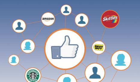 [Débat] Les campagnes Facebook sont-elles efficaces ? | Gaia news | Scoop.it
