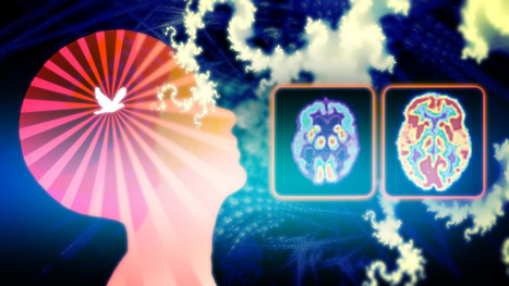 What Happens to the Brain When You Meditate (And How it Benefits You) | Mind Hacks | Scoop.it