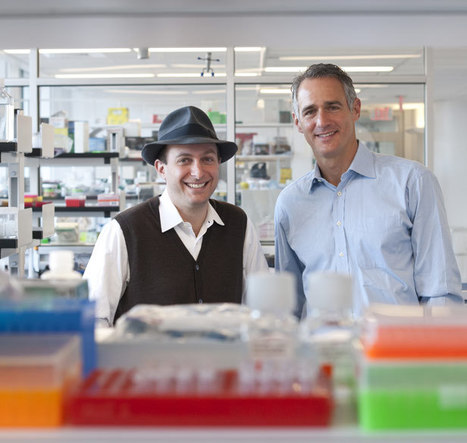Foundation Medicine: Personalizing Cancer Drugs | Amazing Science | Scoop.it