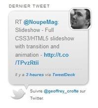 Juiz Last Tweet Widget : afficher vos derniers tweets | Media & Communication | Scoop.it