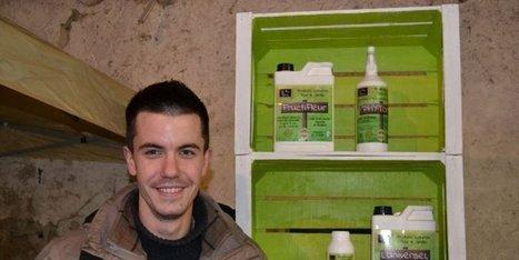 Le business des orties | Chimie verte et agroécologie | Scoop.it