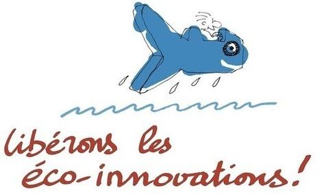 Voilier du Futur   Crowdfunding Nautisme   Scoop.it