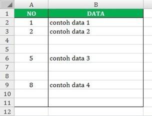 Cara Membuat Nomor Otomatis Pada Excel | Exist Online | Exist Online | Scoop.it