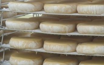 Côte-d'Or :Les secrets du fromage des moines | The Voice of Cheese | Scoop.it