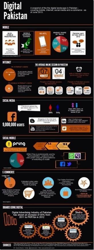 Pakistan's digital landscape snapshot | eTechcrunch.com | Scoop.it