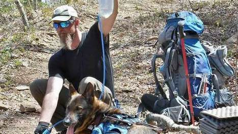Guide dog helps man hike Appalachian Trail | Dog News | Scoop.it