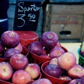 Travel Tuesday: Marché Jean Talon (Montreal) | eat. live. travel. write. | Local Montreal Scene | Scoop.it