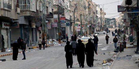 U.S., Britain Suspend Aid To North Syria | Egypt and Syria - Eric Thomas | Scoop.it
